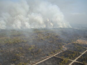 Aerial View Of Forest Burning Angle Three